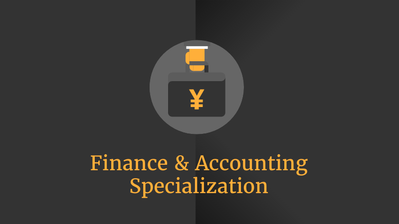Y.S. VP Finance Manager
