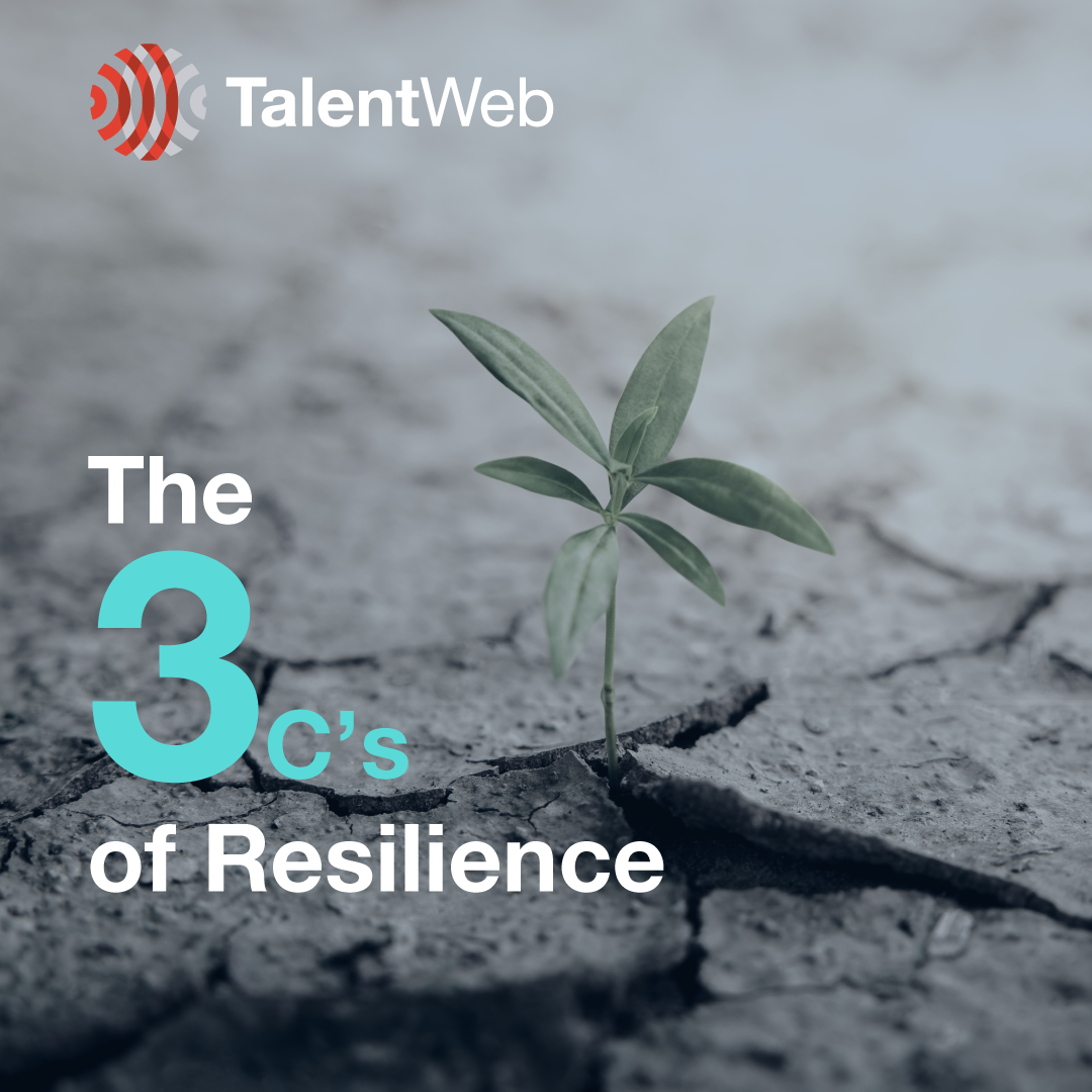 The 3c's of Resilience